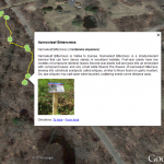 View Interactive Tour in Google Earth