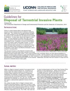 IMG_Guidelines for Disposal of Terrestrial Invasive Plants