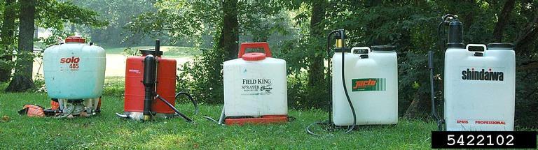 SteveManningInvasivePlantControlBugwoodmodelsbackyardsprayers
