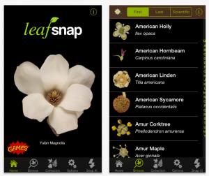 app-leafsnap